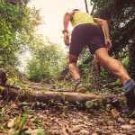 Recherche SP pour section trail/trecking